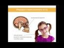 Як покращити зір профілактика порушень зору вітаміни продукти гігієна лікув