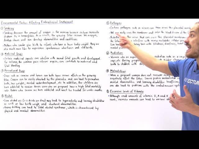 Factors Affecting Fetal Development