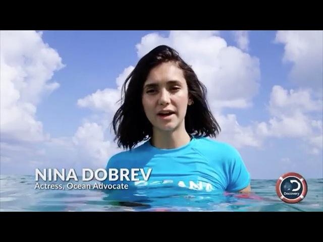 Нина Добрев - Другие проекты с участием актеров - отрывок из документального фильма