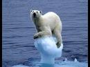Таяние арктических ледников грозит миру серией супер морозных зим