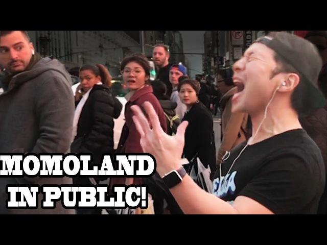 MOMOLAND -