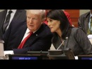 Donald Trump Nikki Haley United Nations'Big Step in Right Direction': US Envoy to UN Pleased With Ef