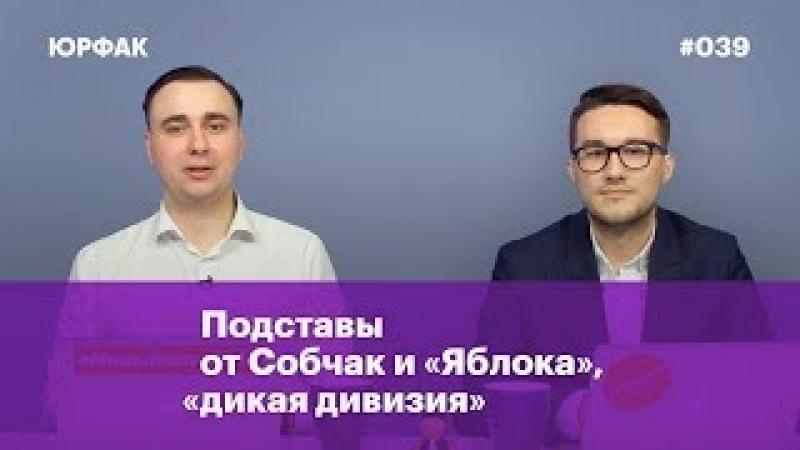 Организация наблюдения, отзывы направлений от Собчак и «Яблока», «дикая дивизия»