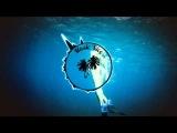 Ace Of Base - Cruel Summer (Yogi Nando Remix)