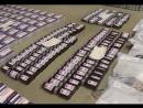 МВД России приняло участие в глобальной международной операции Пангея