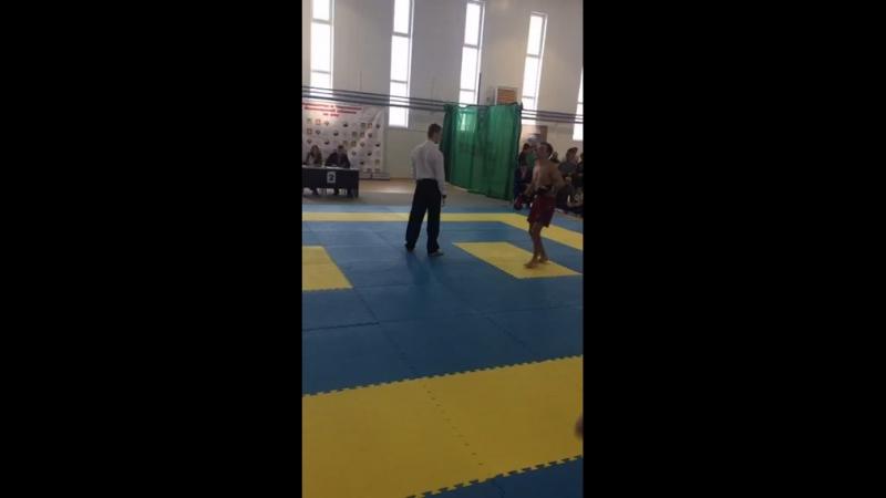 Чемпионат и Первенство Московской области по ушу-саньда (кунг-фу)