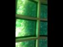байкал прогулка на катере со стеклянным дном