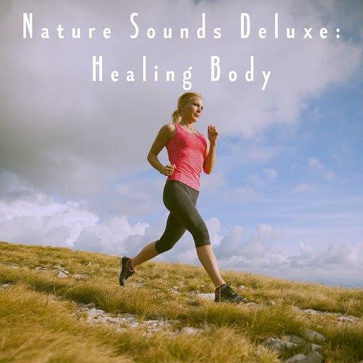 Rain альбом Nature Sounds Deluxe: Healing Body