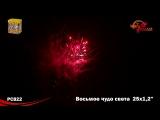 Восьмое чудо света 2014_PC 822