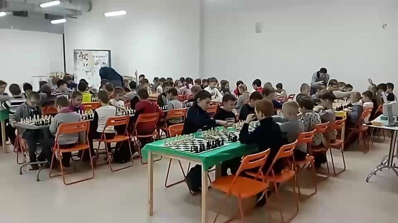 Турнир Шахматное королевство