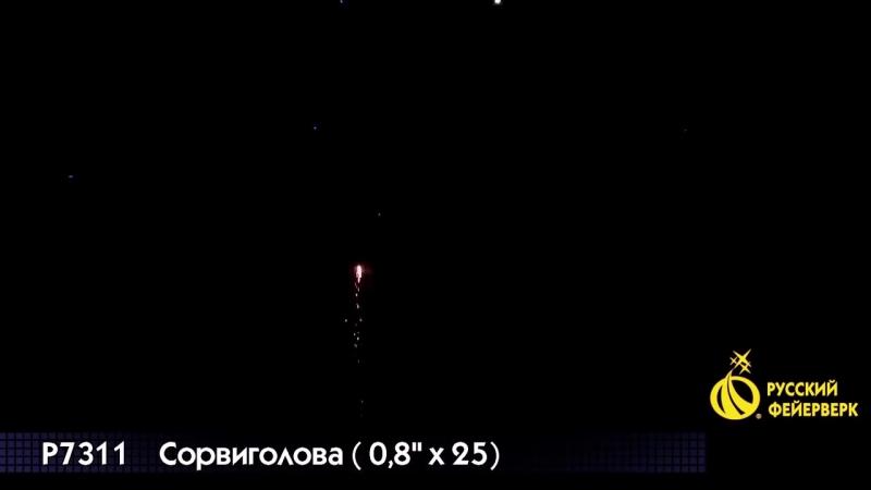 Салют Р7311 Сорвиголова 25 х 0,8