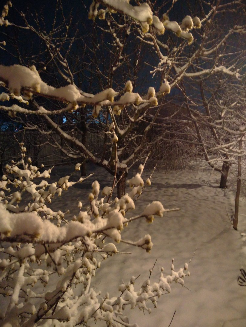 Snowfall in the Republic of Crimea on the night of March 22, 2018Russia
