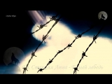 Новый сборник клипов шансона 2017 Студия Шура БЛАТНОЙ ШАНСОН 2017 от Студии Шу