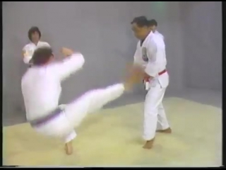 ISSHIN RYO KARATE KATAS Vol 1