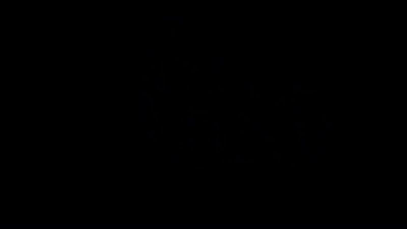 Сказки картинной галереи - Эль Греко (23 серия) (Уроки тетушки Совы)