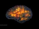 Проход через стеклянный Мозг