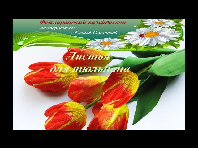 Как сделать листья тюльпана из фоамирана (три способа) . Мастер-класс Елены Семановой