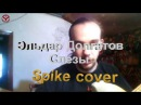 Эльдар Долгатов Слезы (Spike cover)