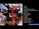 IMPALED - Choice Cuts Full-length Album Death MetalGrindcore