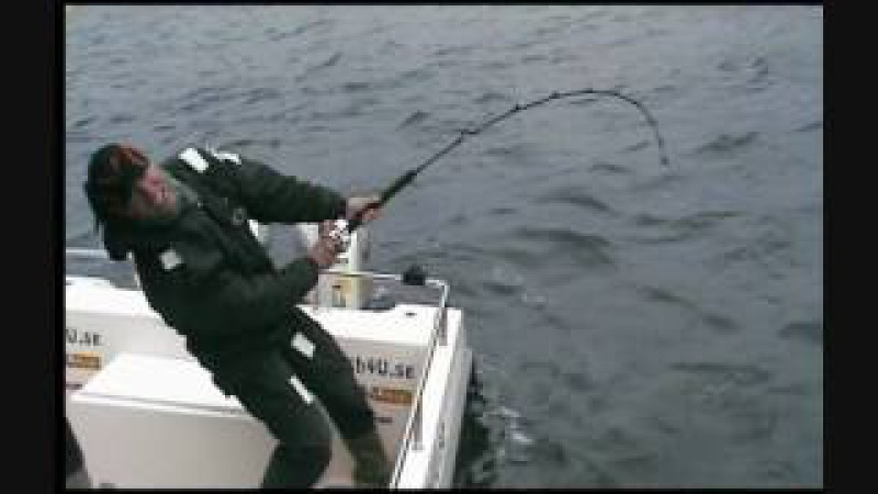 Fish4U Hälleflundra 168cm C R Göran Christensen