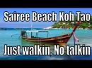 Koh Tao Sairee Beach Thailand. Walkin, No Talkin