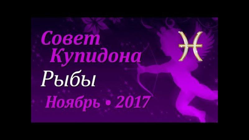 Рыбы, совет Купидона на ноябрь 2017. Любовный гороскоп.