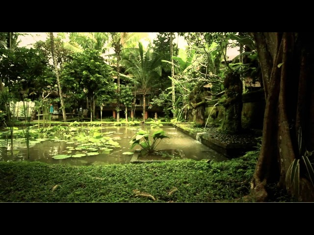 Postcard from Bali (Canon 5d MkII)