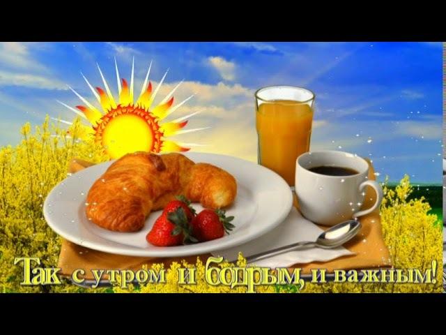 ПРИВЕТ ! С ДОБРЫМ УТРОМ ТЕБЯ !! Hello! With a good morning you!