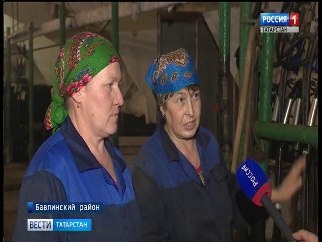 Фермы Татарстана все больше становятся механизированными