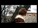 Bach / Tarkovsky
