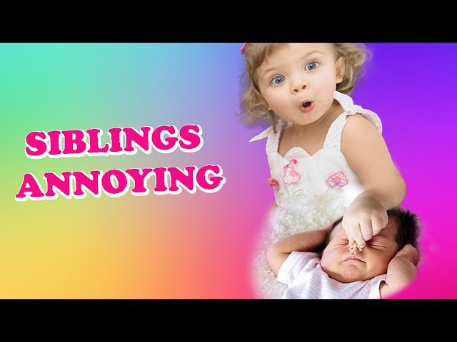 Try Not To Laugh - Babies And Big Brother/Sister Annoying    Funny Vines