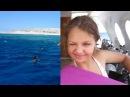 Хургада! Детский дайвинг в Хургаде. Красное море Kids diving in Hurghada/ the Red sea
