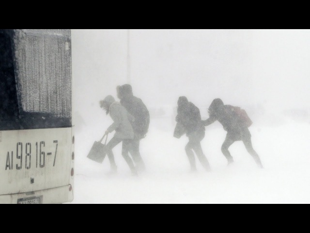 Новыя хваробы нясе ў Беларусь пацяпленне клімату / Прыват   Изменение климата - это плохо