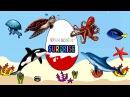 Киндер сюрпризы и морские животные. Грузовик везет киндер сюрпризы. Мультик для детей