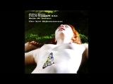 John Zorn &amp Marc Ribot - Belle de Nature