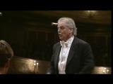 Richard Wagner_ Ride of the Valkyries (Berliner Philharmoniker, Daniel Barenboim