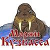 Моржи Кузбасса. Новокузнецк.