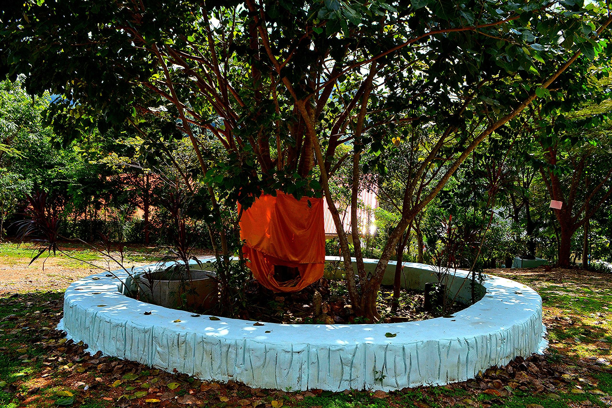 Елена Руденко (Валтея). Таиланд. Буддийский храм в горах. ZxqY5YL3zVQ
