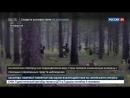 Россия 24 На учениях Запад 2017 обезвредили диверсантов Россия 24