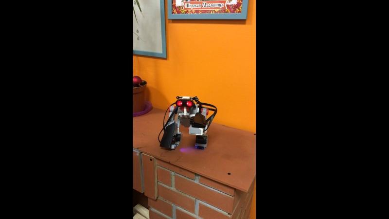 Горилла-первый робот сына!