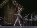 Дон Кихот/ Don Quixote 1984- American Ballet Theatre- Met Opera House