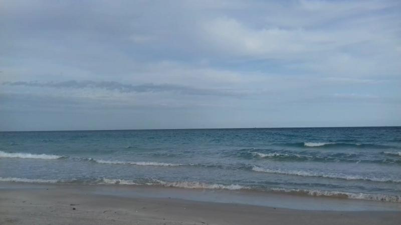 Море - это все! Дыхание его чисто, животворно. В его безбрежной пустыне человек не чувствует себя одиноким...