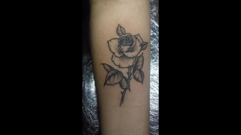 BlackCatTattooArtist tattoo_lviv tattoo тату_львів  татуювання львів art татульвів tattooartist татуировка @ Lviv, Ukr