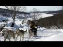 Д/Ф Из племени гончих псов (2017г)