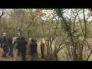 К пойманному в ловушку в Абхазии леопарду, приехали специалисты из Красной поляны