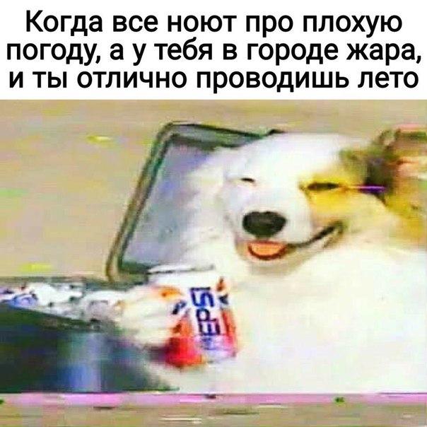 Фото №456266027 со страницы Алексея Загорского
