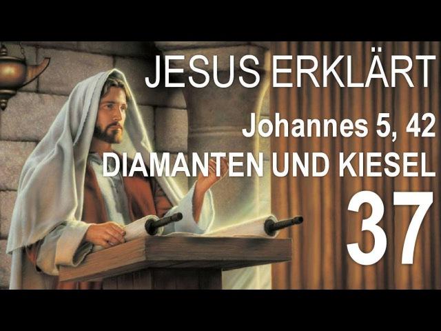 37. WER DIE LIEBE GOTTES NICHT IN SICH HAT, ERKENNT MICH NICHT ❤️ JESUS erläutert Johannes 542