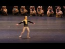 La Bayadere Solor variation - 10 dancers for comparison