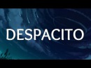 Despacito - Justin Bieber, Luis Fonsi, Daddy Yankee - Video by Vadim Protsik