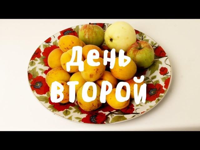ЧТО Я ЕМ НА СЫРОЕДЕНИИ? Неделя влогов моей еды :) ДЕНЬ ВТОРОЙ